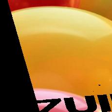 Wijkfeest 2018